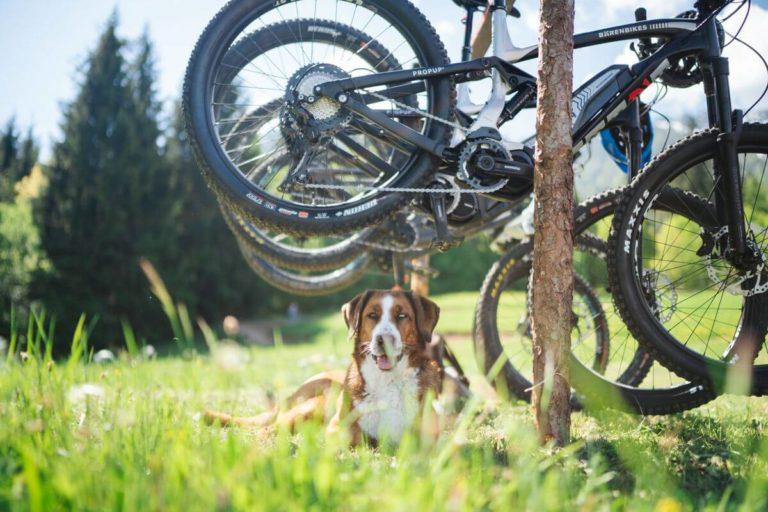 Preise - Bike Verleih und Ausrüstung
